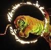 Цирки в Тросне